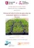 Influence de l'ordre d'arrivée des espèces dans une communauté végétale sur la resistance à l'invasion  - application/pdf