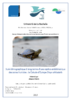 Suivi démographique à long terme d'une espèce emblématique des zones humides : la Cistude d'Europe Emys orbicularis  - application/pdf