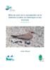 Bilan de suivi de la reproduction de la Glaréole à collier en Camargue et ses environs - Année 2019 - application/pdf