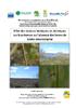 Rapport, Effet des facteurs biotiques et abiotiques sur la présence ou l'absence des larves de Lestes macrostigma  - application/pdf